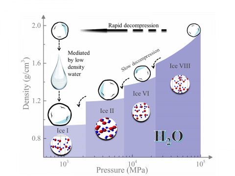 Caption: An illustration shows how rapid decompression is the key to observing low-density liquid water. Low density water mediates the rapid decompression transition from ice-VIII to ice Ic.